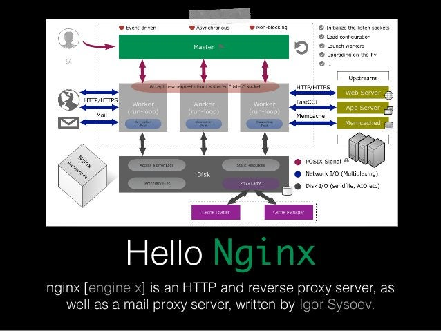 Hello Nginx  nginx [engine x] is an HTTP and reverse proxy server, as  well as a mail proxy server, written by Igor Sysoev...