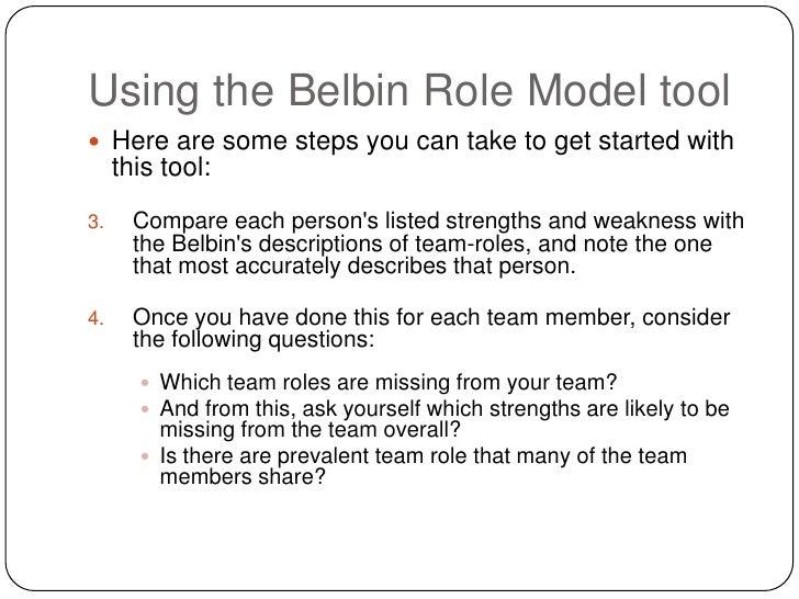 using belbin s team role model
