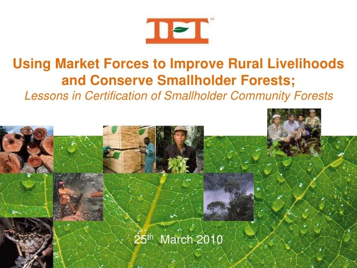 Using Market Forces to Improve Rural Livelihoods <br />and Conserve Smallholder Forests;<br />Lessons in Certification of ...