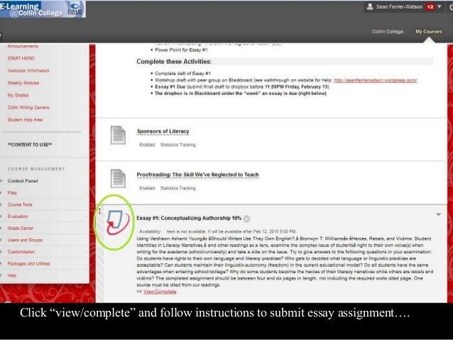 english 1301 essays