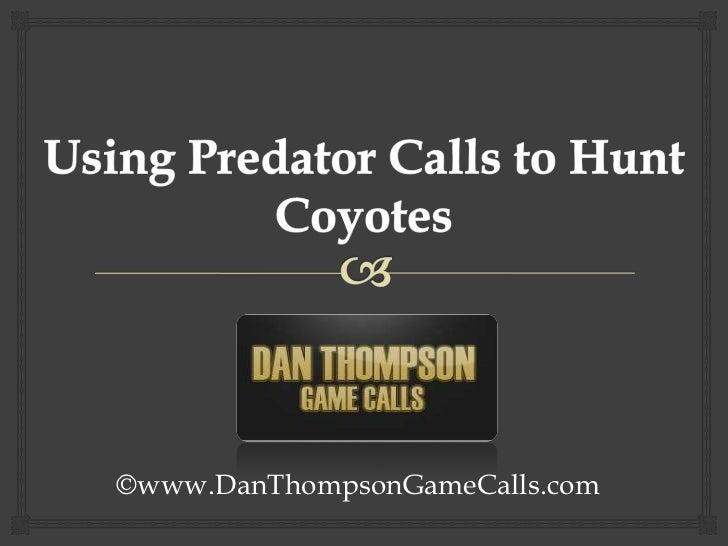 Using Predator Calls to Hunt Coyotes<br />©www.DanThompsonGameCalls.com<br />