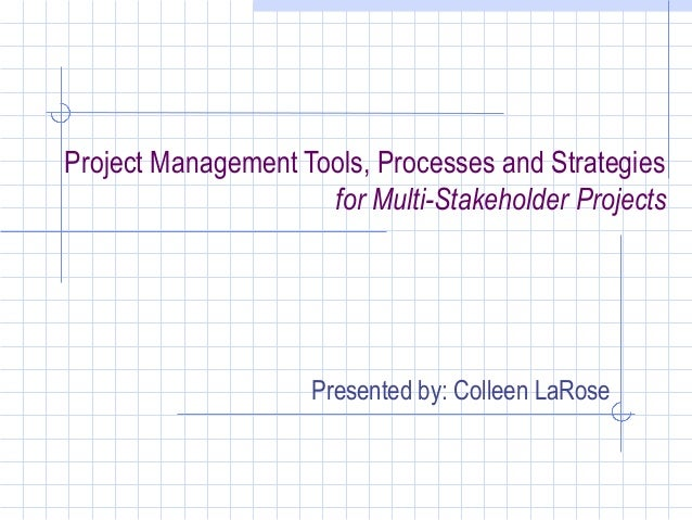 Project Management Tools, Processes and Strategies                     for Multi-Stakeholder Projects                    P...