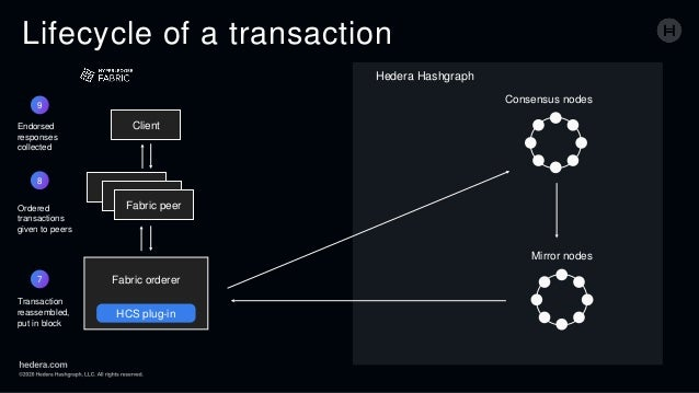 Lifecycle of a transaction Client Fabric peer Fabric orderer HCS plug-in Consensus nodes Mirror nodes 7 Transaction reasse...