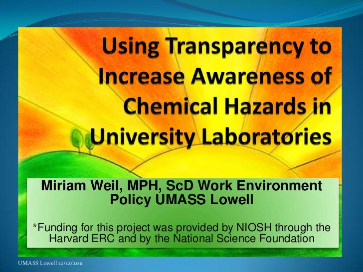 Miriam Weil, MPH, ScD Work Environment                 Policy UMASS Lowell     *Funding for this project was provided by N...