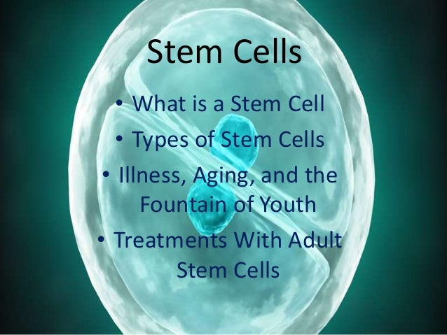 stem cells in regenerative medicine Cirm funds promising stem cell research in california to accelerate stem cell treatments to patients with unmet medical needs.