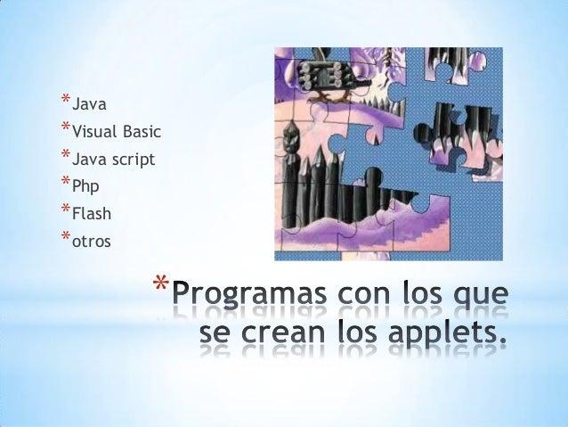 * *Java *Visual Basic *Java script *Php *Flash *otros