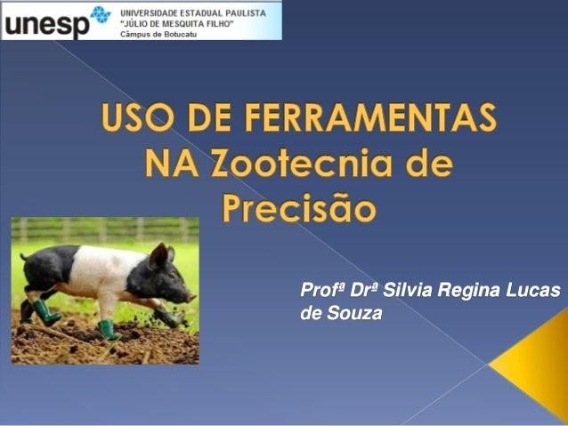 Profª Drª Silvia Regina Lucasde Souza
