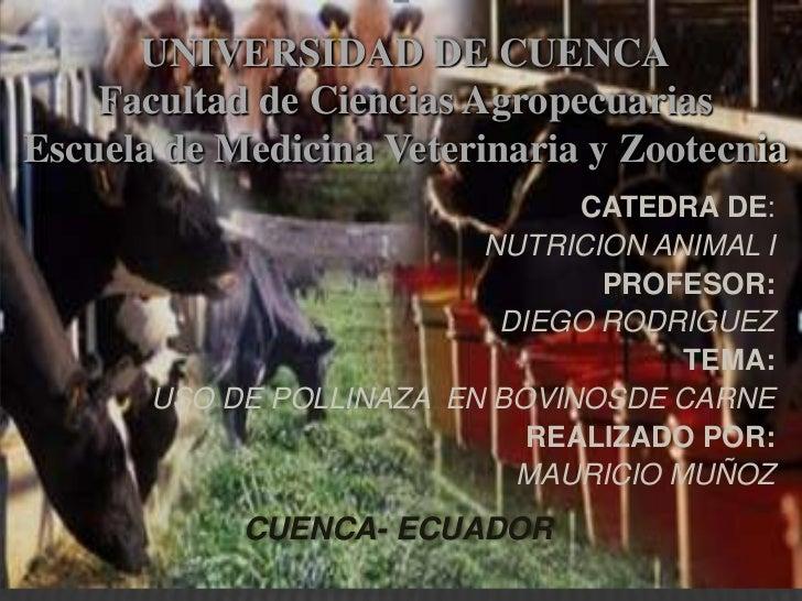 UNIVERSIDAD DE CUENCA    Facultad de Ciencias AgropecuariasEscuela de Medicina Veterinaria y Zootecnia                    ...