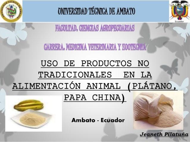 Jeaneth Pilatuña UNIVERSIDAD TÉCNICA DE AMBATO Ambato - Ecuador USO DE PRODUCTOS NO TRADICIONALES EN LA ALIMENTACIÓN ANIMA...