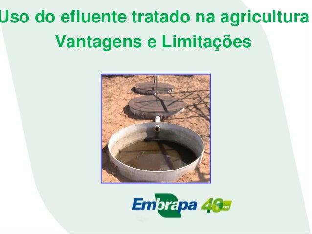 Uso do efluente tratado na agricultura Vantagens e Limitações