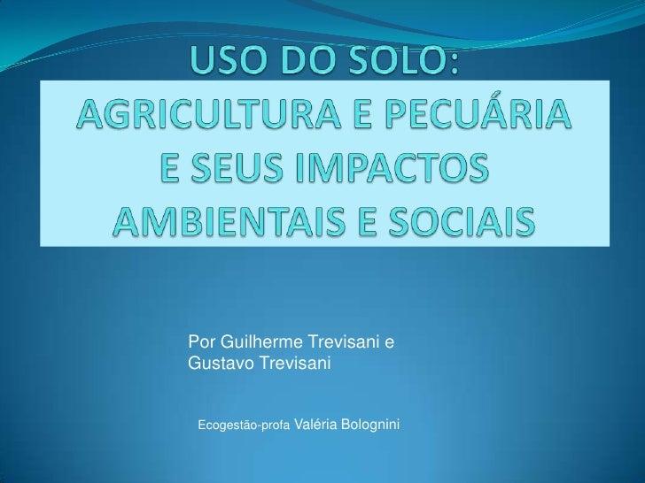 USO DO SOLO: AGRICULTURA E PECUÁRIA E SEUS IMPACTOS AMBIENTAIS E SOCIAIS<br />Por Guilherme Trevisani e <br />Gustavo Trev...