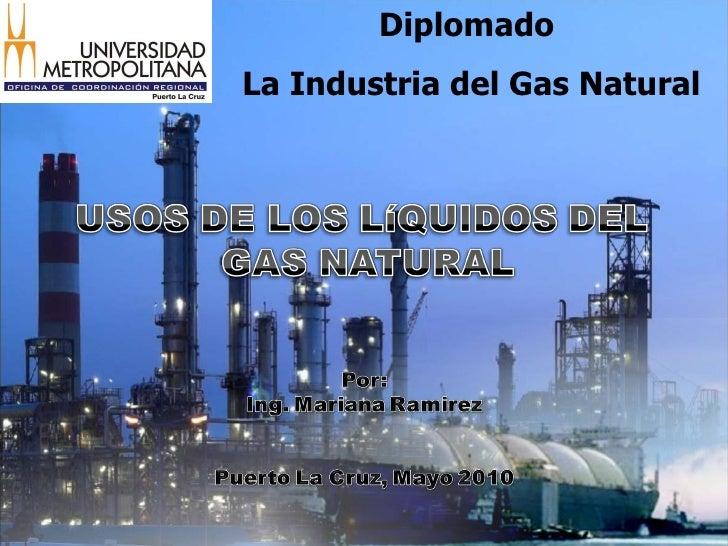 Diplomado  La Industria del Gas Natural