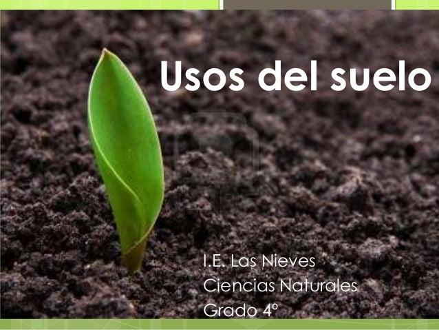 usos del suelo