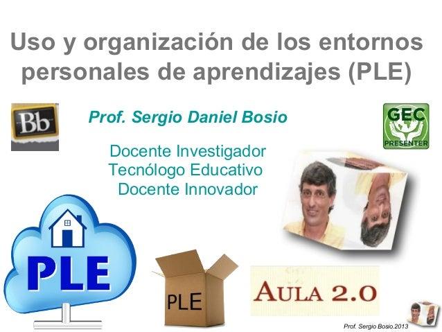 Prof. Sergio Bosio.2013Prof. Sergio Bosio.2013