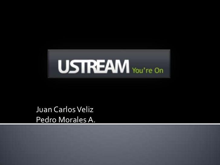 Juan Carlos Veliz<br />Pedro Morales A.<br />