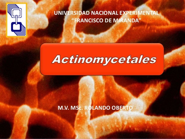 "UNIVERSIDAD NACIONAL EXPERIMENTAL ""FRANCISCO DE MIRANDA"" M.V. MSc. ROLANDO OBERTO"