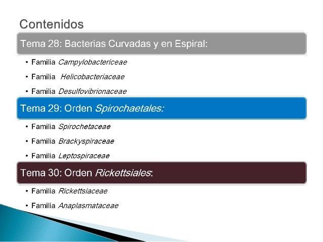 OrdenOrden CampylobacterialesCampylobacteriales GénerosGéneros CampylobacterCampylobacter yy HelicobacterHelicobacter