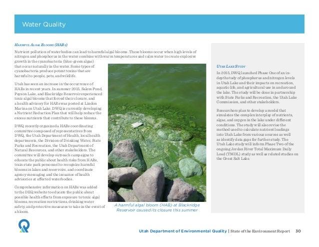Utah Department of Environmental Quality   State of the Environment Report 30 Harmful Algal Blooms (HABs) Nutrient polluti...