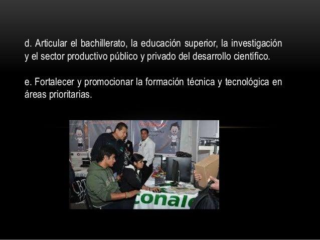 d. Articular el bachillerato, la educación superior, la investigación y el sector productivo público y privado del desarro...
