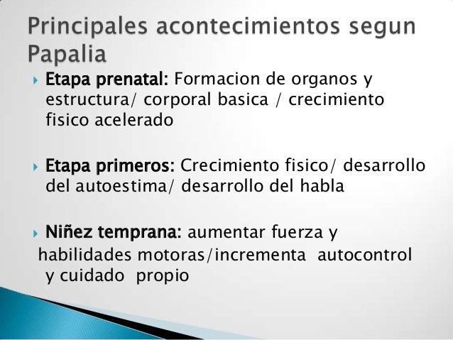  Etapa prenatal: Formacion de organos yestructura/ corporal basica / crecimientofisico acelerado Etapa primeros: Crecimi...