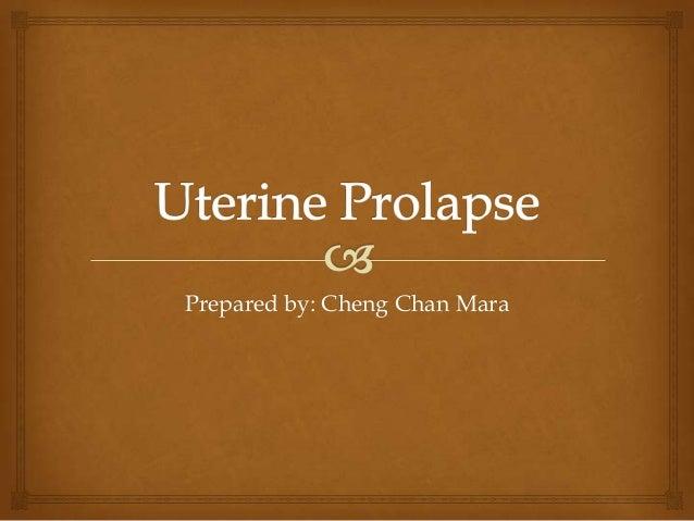 Prepared by: Cheng Chan Mara