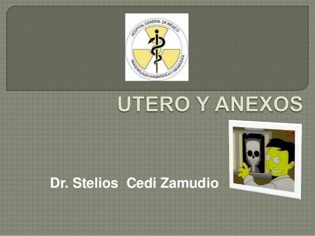 Dr. Stelios Cedi Zamudio