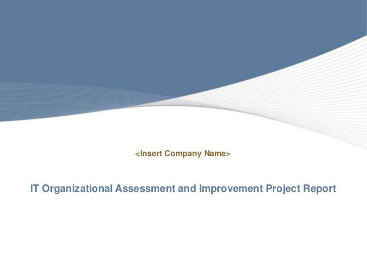 <Insert Company Name>IT Organizational Assessment and Improvement Project Report