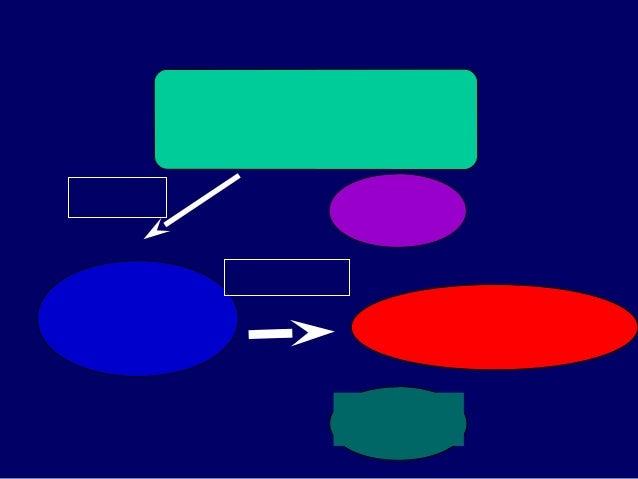 คคคคคคคคคคคคคคคคคคคค คคคคคคคคคคคค คคคคคคคคคคคค คคคคคคคคคค O : Objective : Learning Experience E : Evaluatio