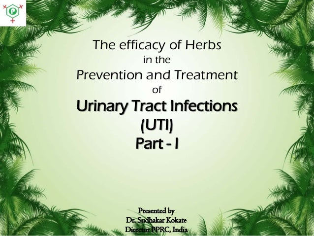 The efficacy of Herbs in the  Prevention and Treatment of  Urinary Tract Infections (UTI) Part - I  Presented by Dr. Sudha...
