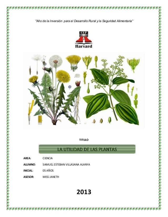 """""""Año de la Inversión para el Desarrollo Rural y la Seguridad Alimentaria""""  TITULO  AREA:  CIENCIA  ALUMNO:  SAMUEL ESTEBAN..."""