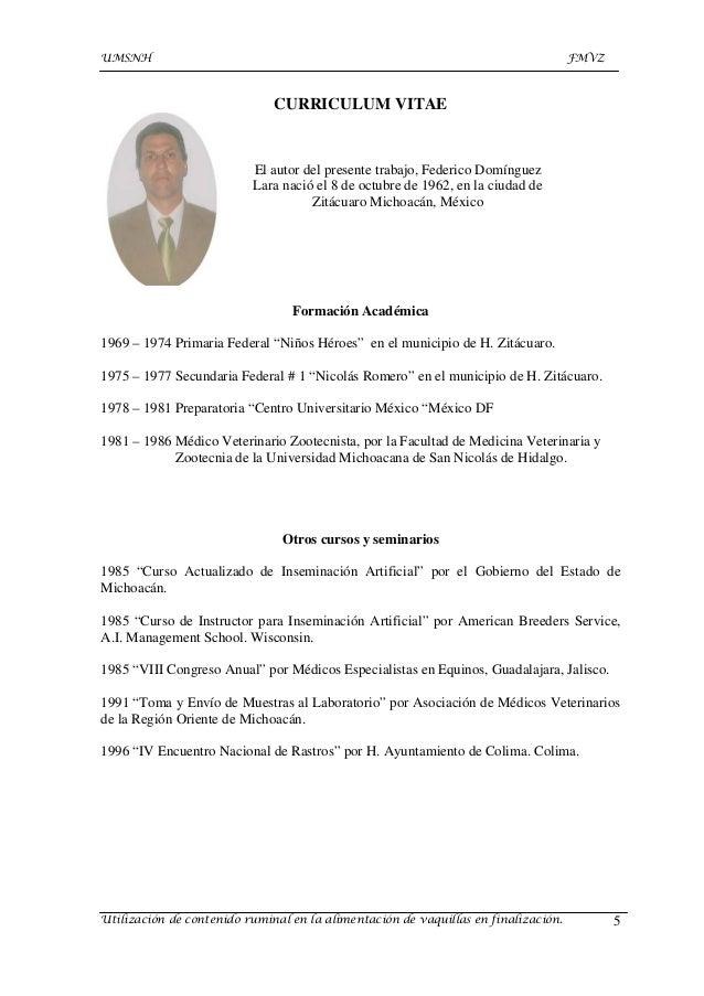 Excelente Muestra Del Curriculum Vitae De Especialistas Colección de ...
