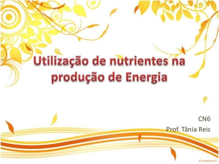 Utilização de nutrientes na produção de Energia<br />CN6<br />Prof. Tânia Reis<br />