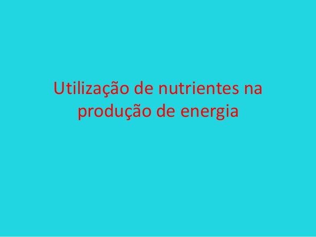 Utilização de nutrientes na produção de energia