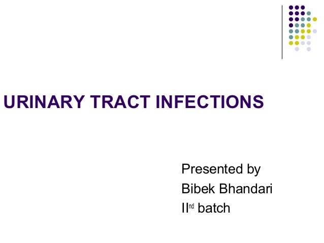 URINARY TRACT INFECTIONS Presented by Bibek Bhandari IInd batch