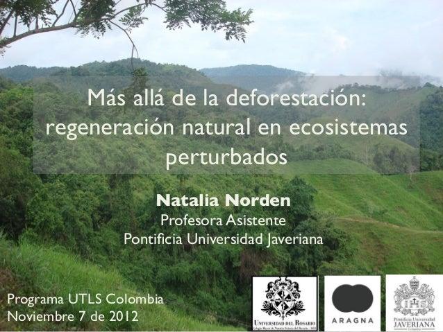 Más allá de la deforestación:     regeneración natural en ecosistemas                 perturbados                     Nata...