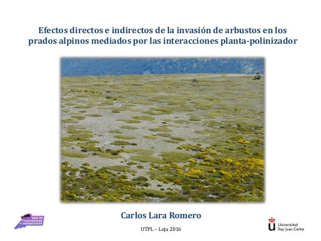 Efectos directos e indirectos de la invasión de arbustos en los prados alpinos mediados por las interacciones planta-polin...