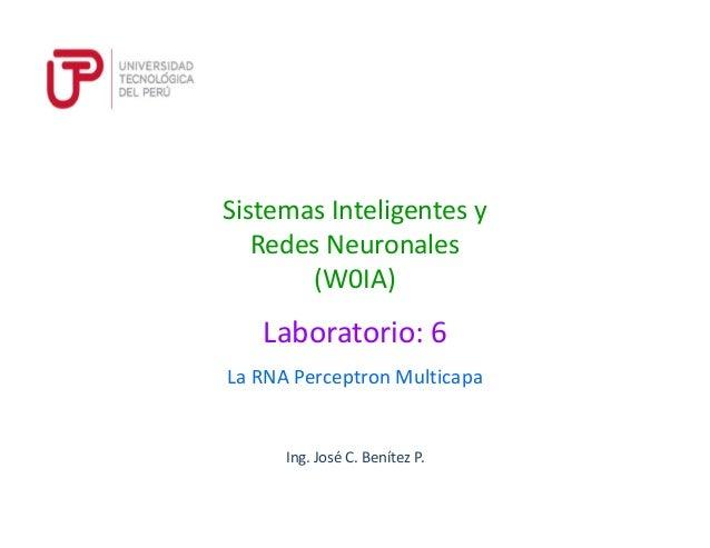 Ing. José C. Benítez P. La RNA Perceptron Multicapa Laboratorio: 6 Sistemas Inteligentes y Redes Neuronales (W0IA)