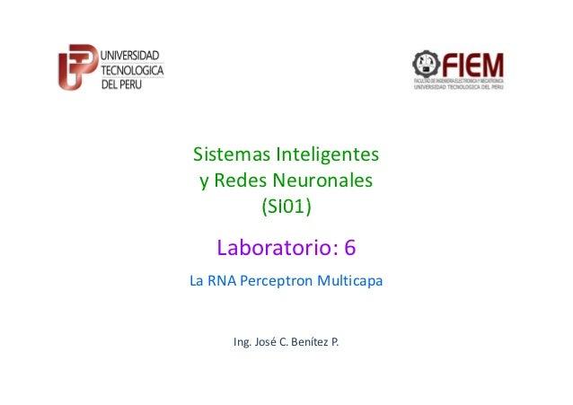 Sistemas Inteligentes y Redes Neuronales       (SI01)   Laboratorio: 6La RNA Perceptron Multicapa      Ing. José C. Beníte...