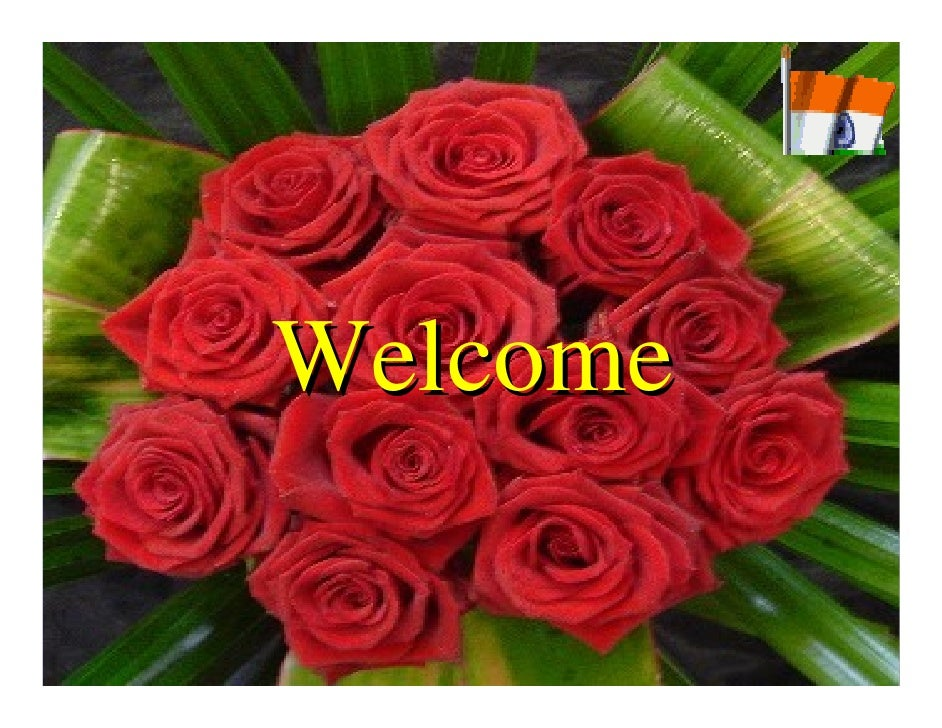 Welcome Welcome           AIU SG – DGD 2007-08   1