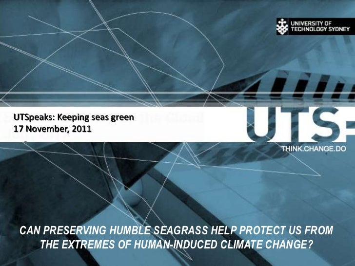 UTSpeaks: Keeping seas green17 November, 2011 CAN PRESERVING HUMBLE SEAGRASS HELP PROTECT US FROM    THE EXTREMES OF HUMAN...