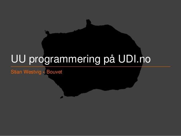 UU Erfaringer fra UDI Slide 2