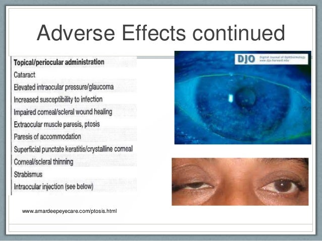 Ivermectin Dogs Side Effects
