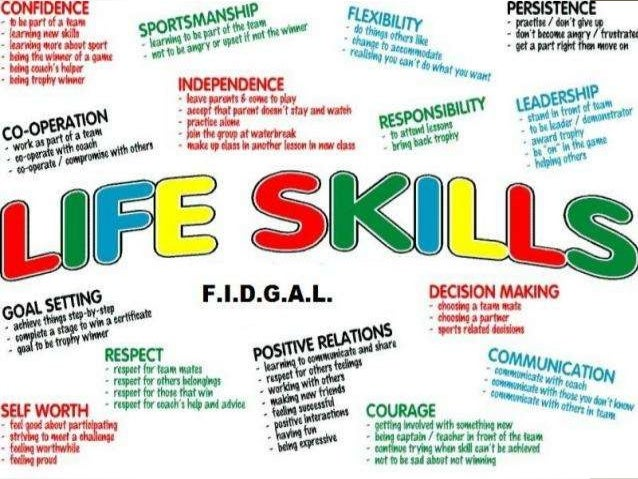 Professional Skills  Life skills  Your Attitude  Taking responsibility for your own  attitude is the first step to success...