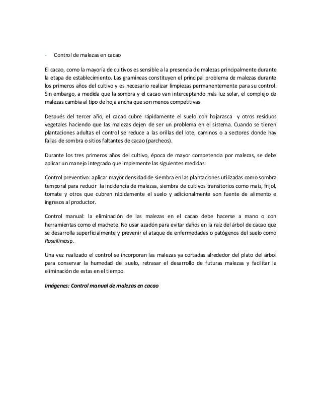 Modelo agroforestal basado en el cultivo de cacao para la for Modelo demanda clausula suelo