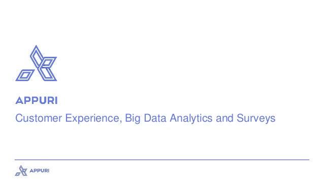 Customer Experience, Big Data Analytics and Surveys