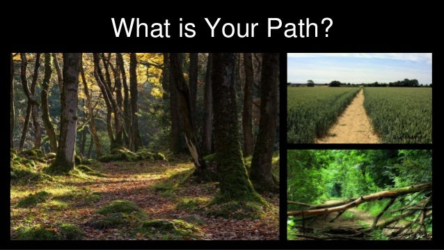 What is Your Path? Oaktor Photography Brian Mullender Riccardo Cuppini