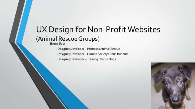 UX Design for Non-ProfitWebsites (Animal Rescue Groups) Bruce Sklar Designer/Developer – Promises Animal Rescue Designer/D...