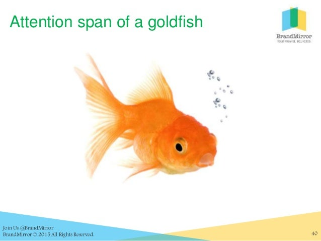 The user experience of you jen dalton for Your inner fish sparknotes