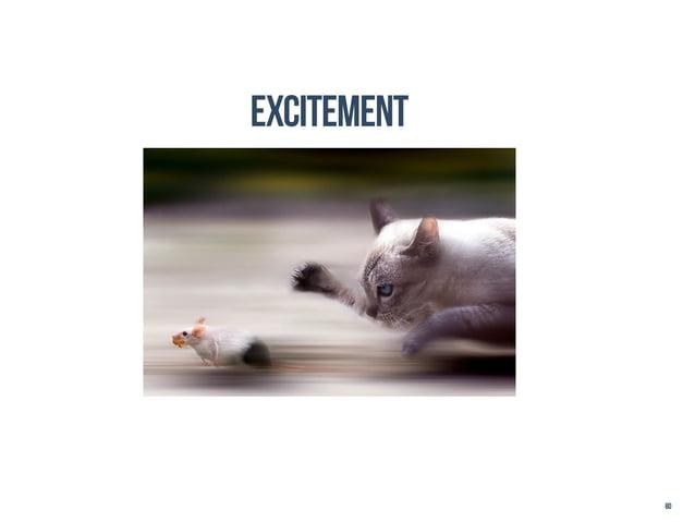 excitement             80