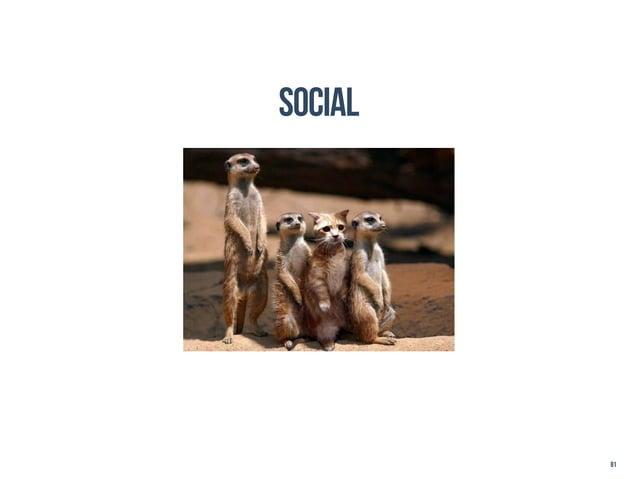 social         81
